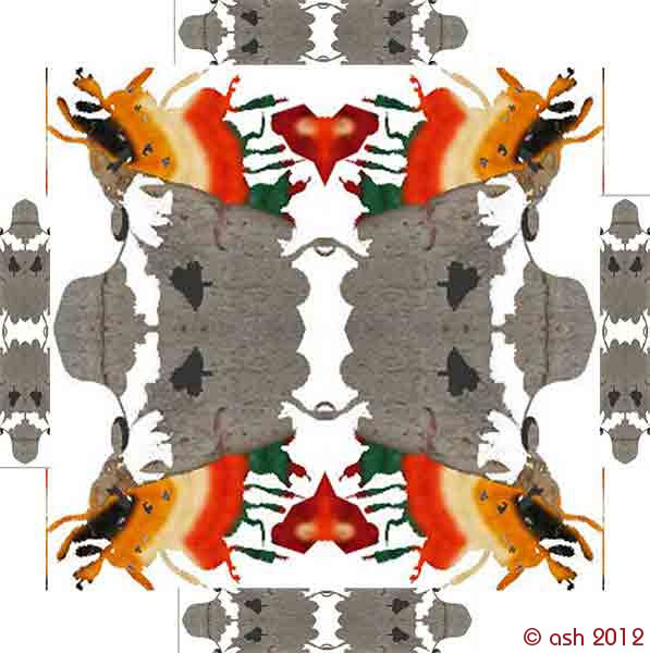 koláž / collage  (c) ashaadox