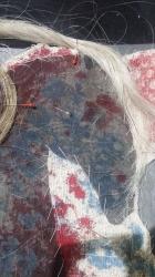 kun rozvrzeni - detail ashaadox