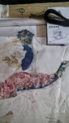 ptak rozvrzeni1 ashaadox