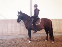Limon & Ashaadox Academic Art of Riding with Claudia Strauss 12/2017