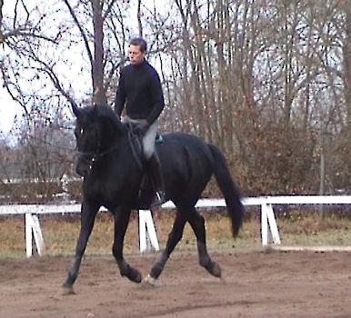 Paradox ( rusky traken) s Davidem de Wispealere(2006)